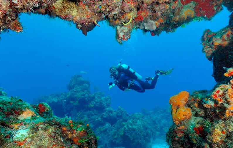Cozumel enters the World Network of Biosphere Reserves