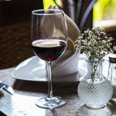 Quesos, vinos y algunos datos curiosos – 100 vinos mexicanos 2018