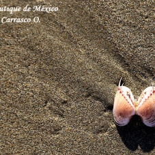 Playas aisladas y hermosas en México