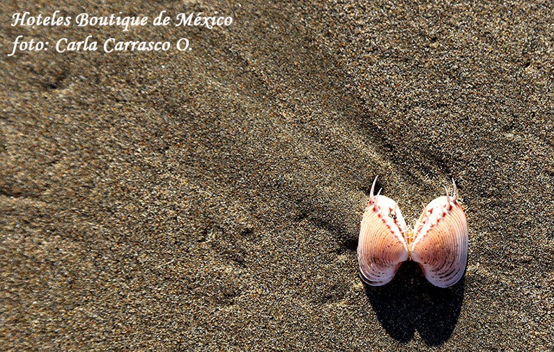 Secluded & beautiful beaches in Mexico