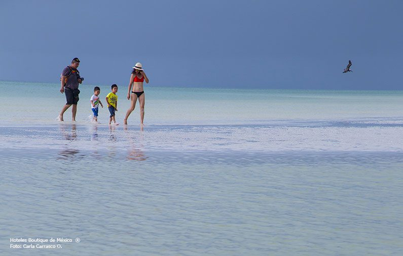 Guía familiar por Isla Holbox