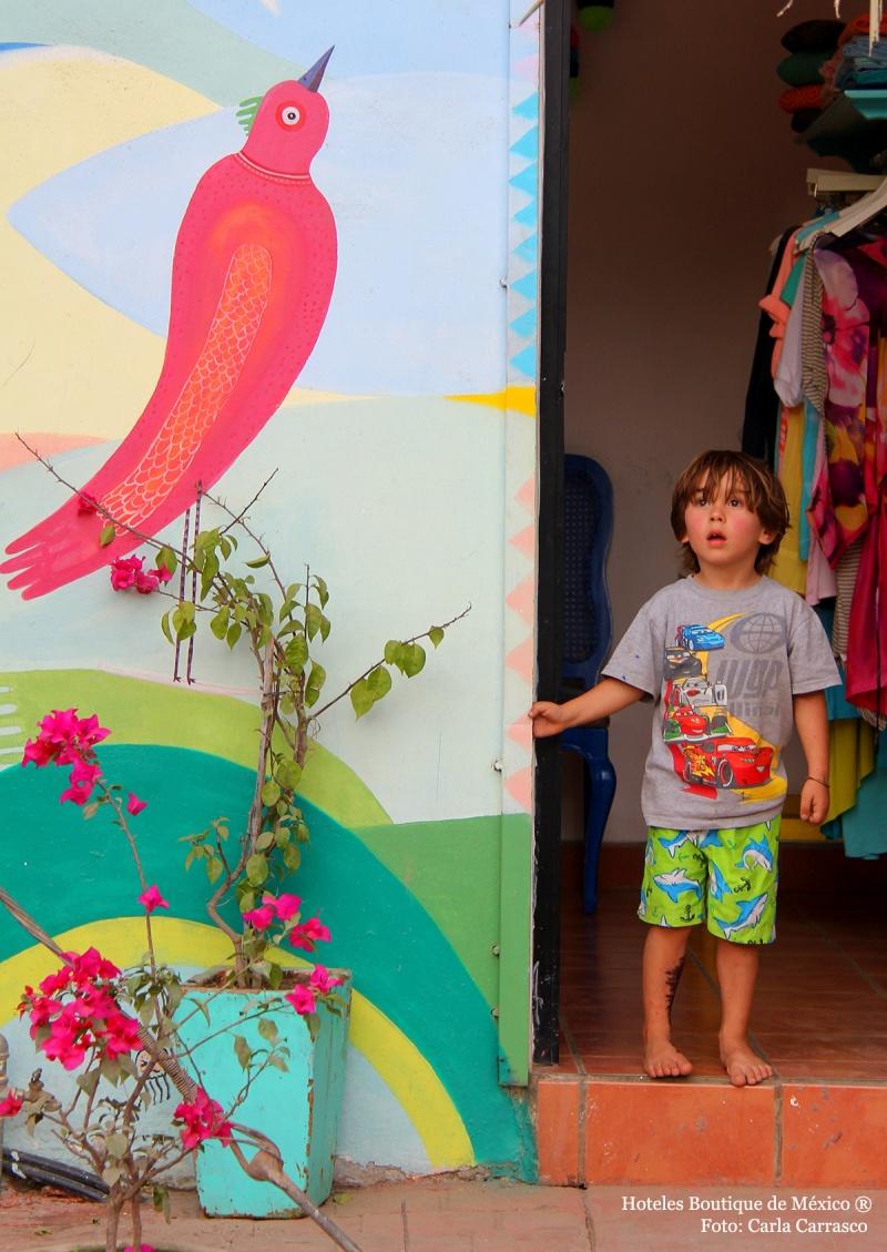 galeria fotografico playa nayarit: