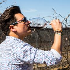 La Ruta del Queso y el vino en Bernal