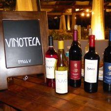 Bebidas y Vinos