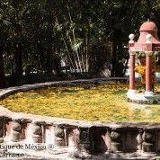 hoteles-boutique-de-mexico-cuernavaca-moreles-4