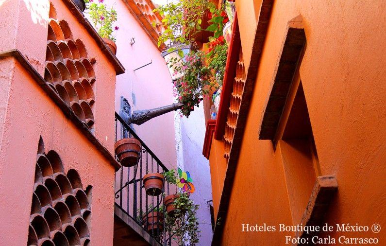 Contemporary Art: Guanajuato