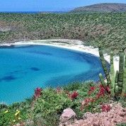 hoteles-boutique-de-mexico-destino-la-paz-baja-california-sur-10