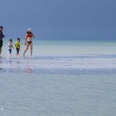 Family guide by Isla Holbox