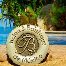 What you didn´t know about Mexico Boutique Hotels