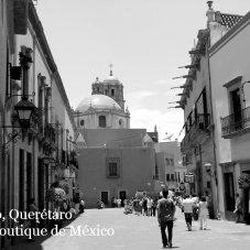 Santiago de Querétaro y sus Sabores